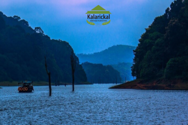 Bests homestays in Periyar - KH PlantationB
